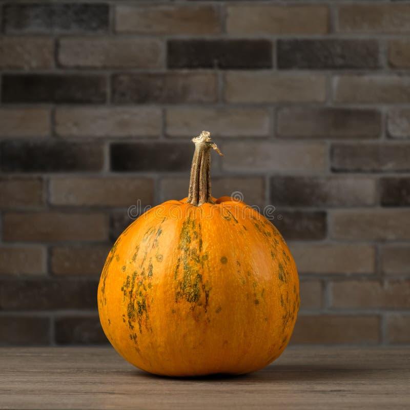 Reife Kürbis dicht auf einem Holztisch auf dem Hintergrund einer feuchten Ziegelwand Konzept Herbst- oder Halloween-Hintergrund vektor abbildung