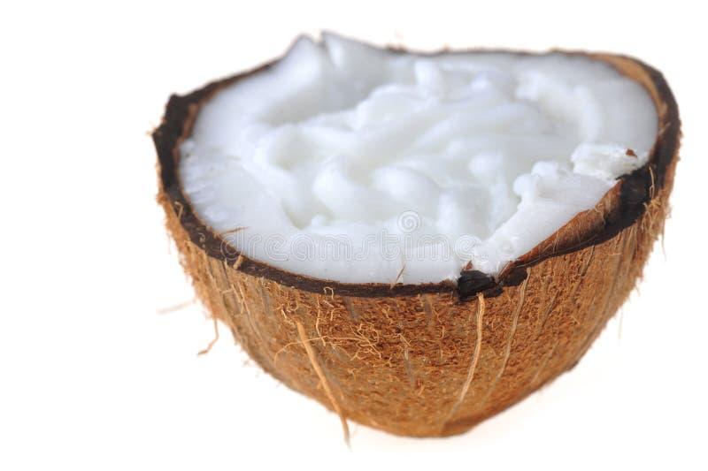 Reife Kokosnuss lizenzfreie stockbilder