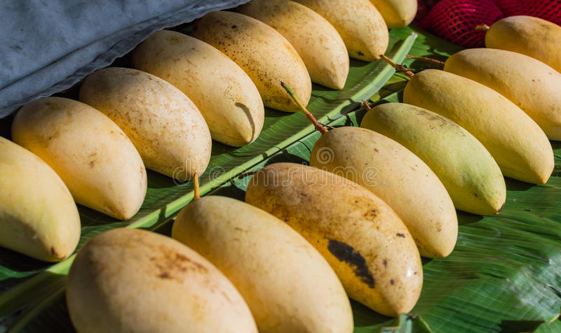 Reife Mango auf dem Markt lizenzfreie stockfotografie