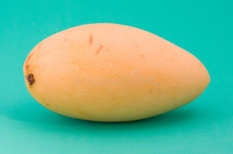 Reife Mangofrucht stockbilder