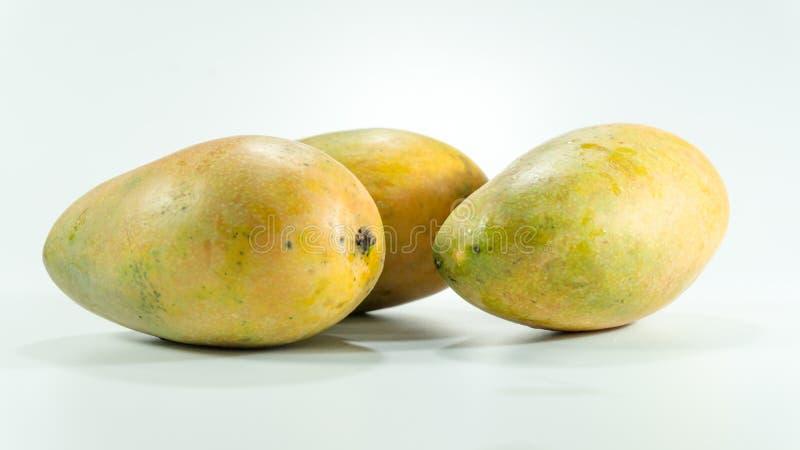 Reife Mangos im weißen Hintergrund lizenzfreie stockbilder