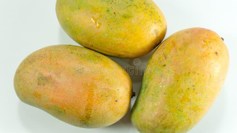 Reife Mangos im weißen Hintergrund stockbilder