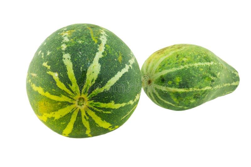 Reife Melone lokalisiert lizenzfreie stockbilder