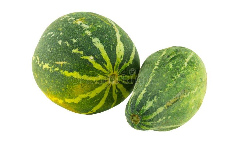 Reife Melone lokalisiert stockbild