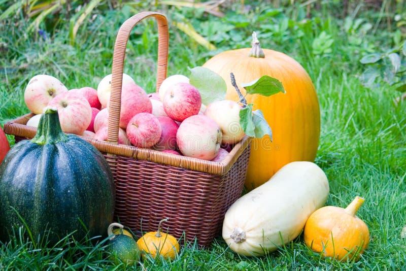 Reife Obst und Gemüse lizenzfreie stockbilder