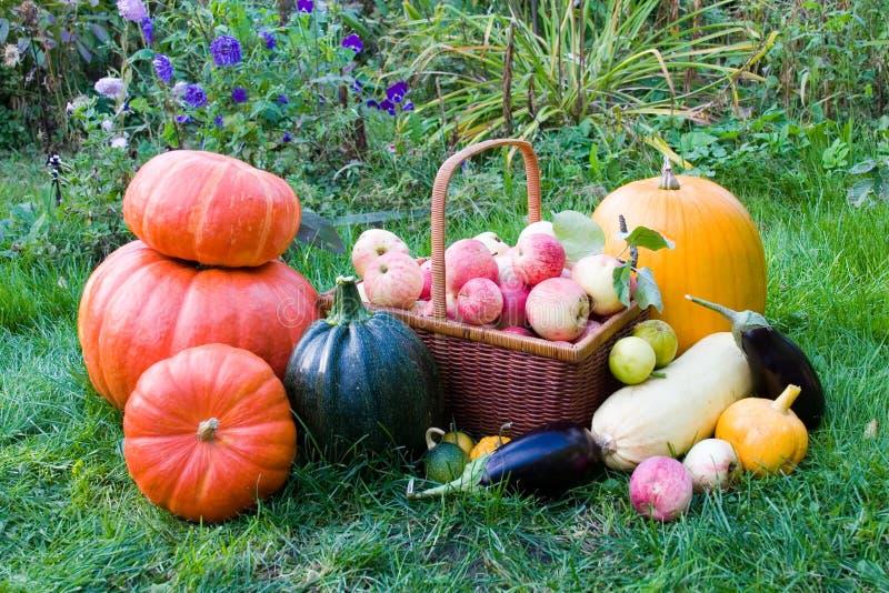 Reife Obst und Gemüse stockfotografie