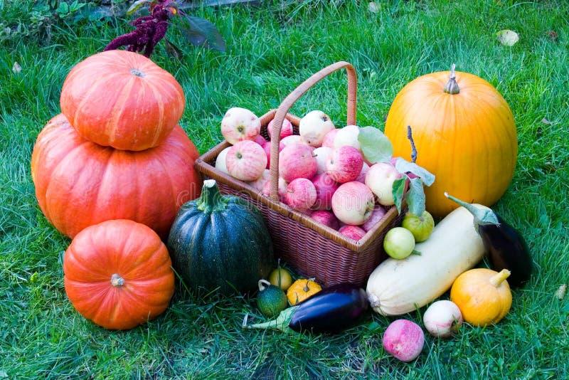 Reife Obst und Gemüse lizenzfreie stockfotografie