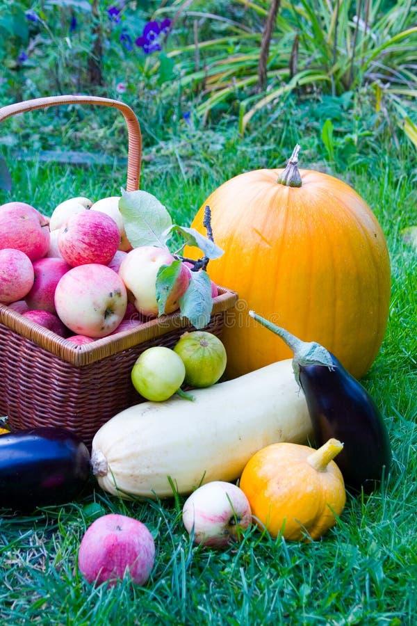 Reife Obst und Gemüse lizenzfreies stockbild