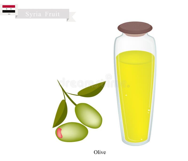 Reife Olive, eine populäre Frucht in Syrien vektor abbildung