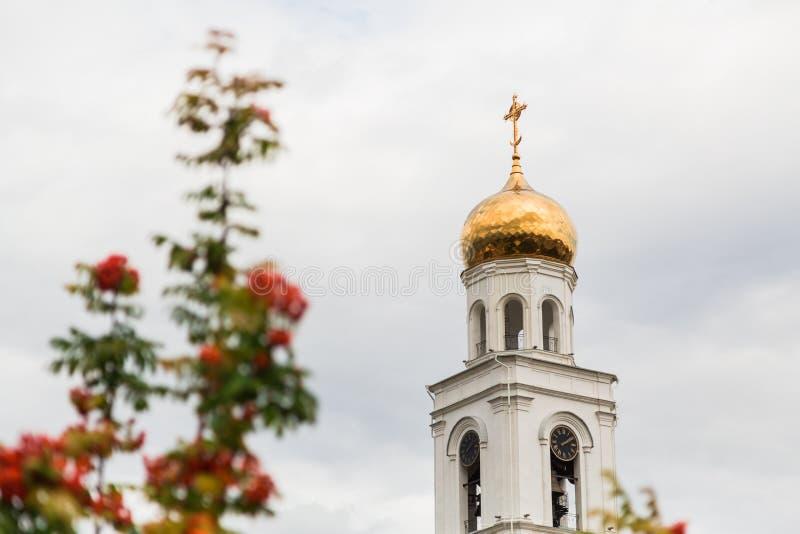 Reife orange Beeren des Ebereschenbaums und der orthodoxen Kirche im Hintergrund Die Stadt von Samara, Russland Das Iversky Klost lizenzfreies stockbild