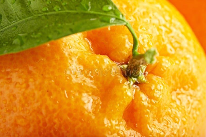 Reife Orange mit Blättern stockbilder