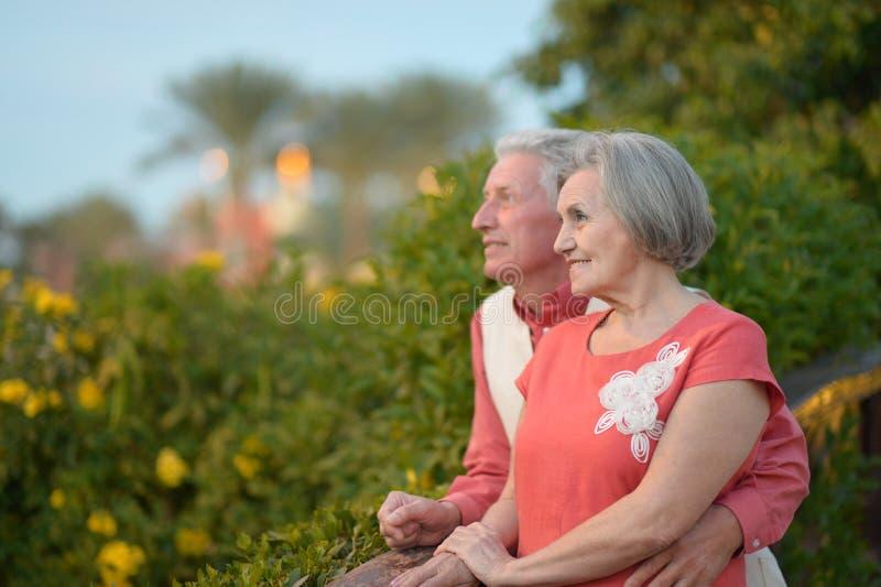 Reife Paare auf dem Weg stockfotos