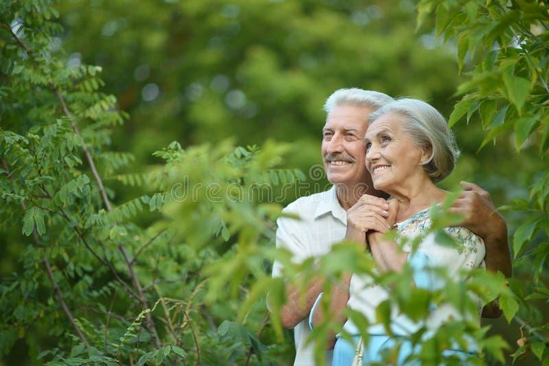Reife Paare auf Weg im Sommer lizenzfreie stockfotos