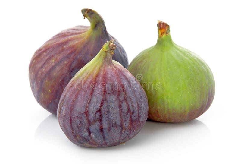 Reife purpurrote und grüne Feigefrucht getrennt lizenzfreie stockfotografie