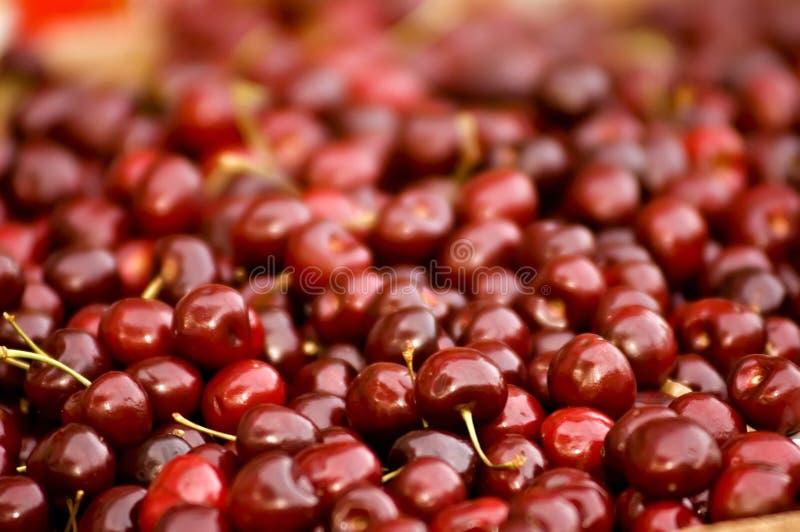 Reife rote Beeren lizenzfreies stockbild
