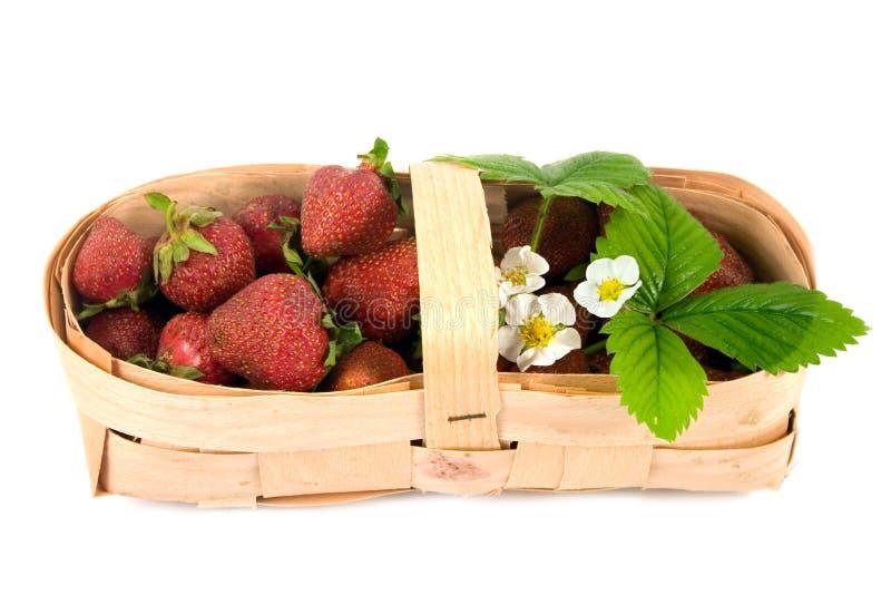Reife rote Erdbeeren lizenzfreies stockfoto