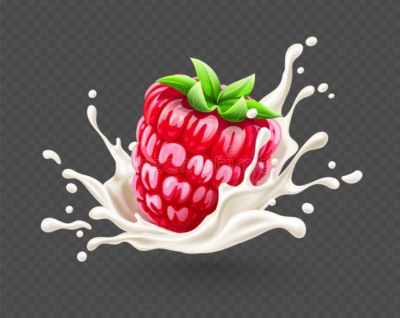 Reife rote Himbeerfrucht, die in Jogurtspritzen fällt Auch im corel abgehobenen Betrag stock abbildung