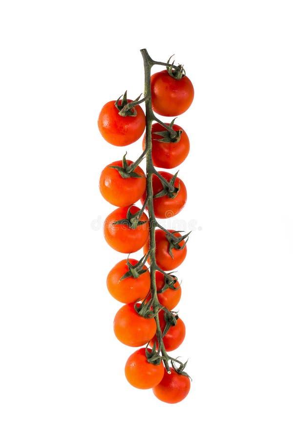 Reife rote Kirschtomaten lizenzfreies stockfoto