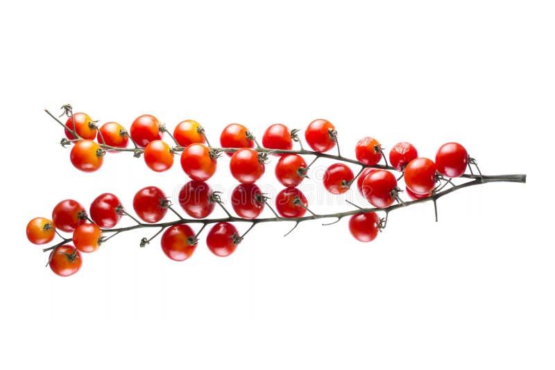 Reife rote Kirschtomaten auf wei?em Hintergrund lizenzfreie stockbilder