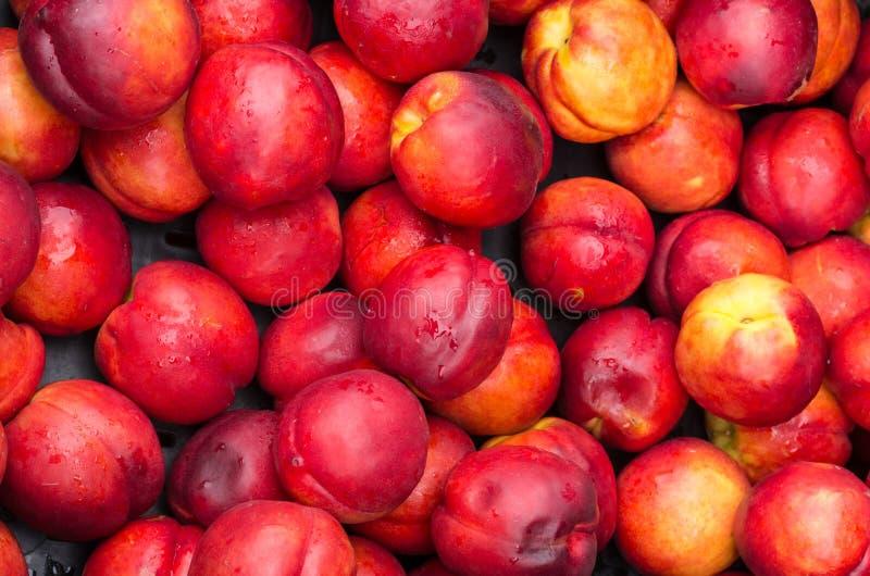 Download Reife Rote Nektarinen Für Verkauf Am Markt Stockfoto - Bild von nahrhaft, frisch: 26369012