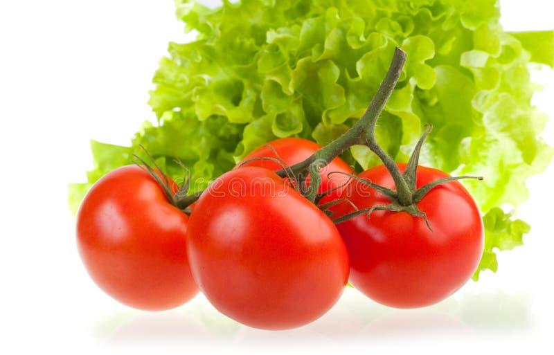 Reife rote Tomaten und grüne Blätter des Salats. stockbild