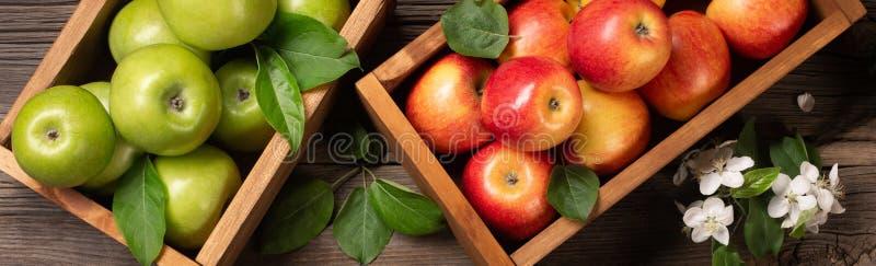 Reife rote und grüne Äpfel in der Holzkiste mit Niederlassung von weißen Blumen auf einem Holztisch stockfoto