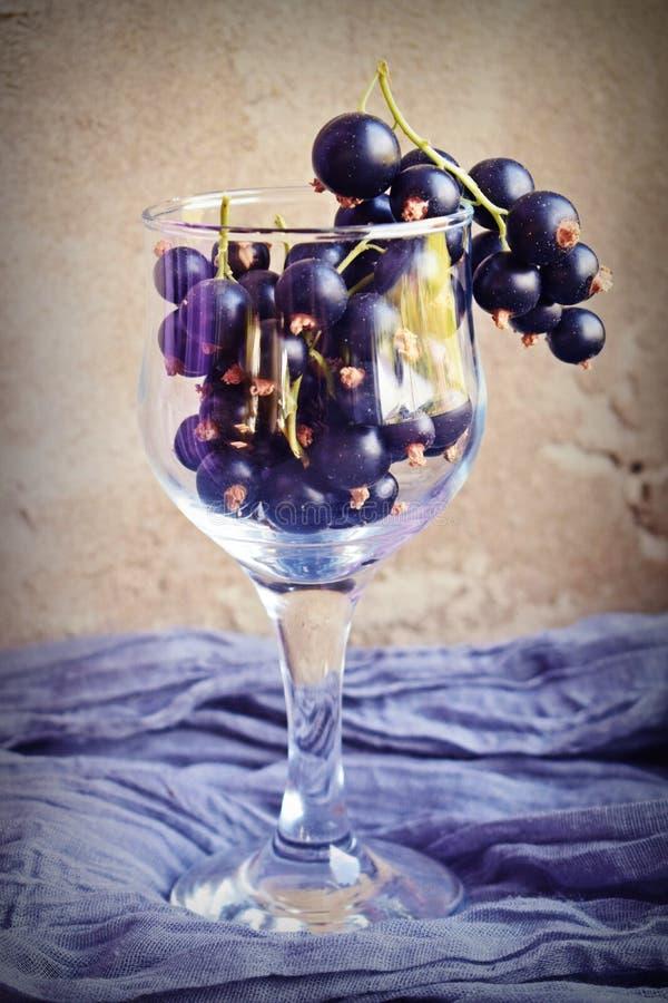 Reife, süße Schwarze Johannisbeere in einem Glasbecher lizenzfreie stockfotografie
