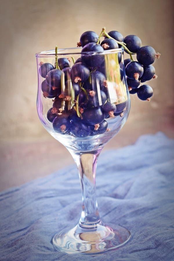 Reife, süße Schwarze Johannisbeere in einem Glasbecher stockfoto
