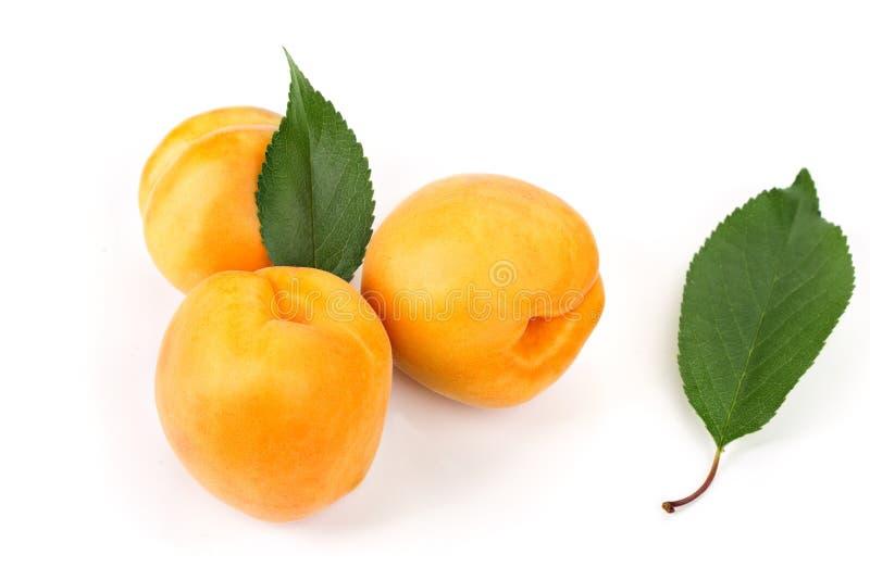 Reife saftige gelbe Aprikosen mit Blättern auf einer weißen Tabelle stockbild