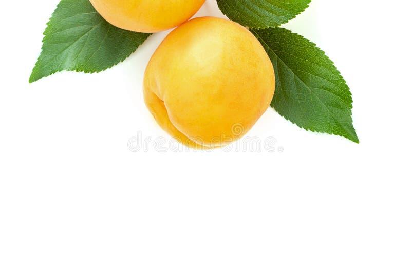 Reife saftige gelbe Aprikosen mit Blättern auf einer weißen Tabelle stockfotos