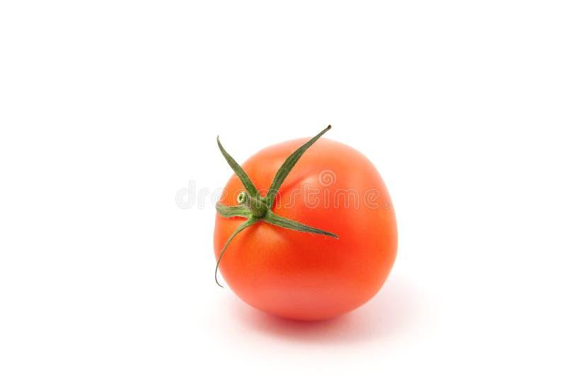 Reife Tomate auf einem weißen Hintergrund stockbilder