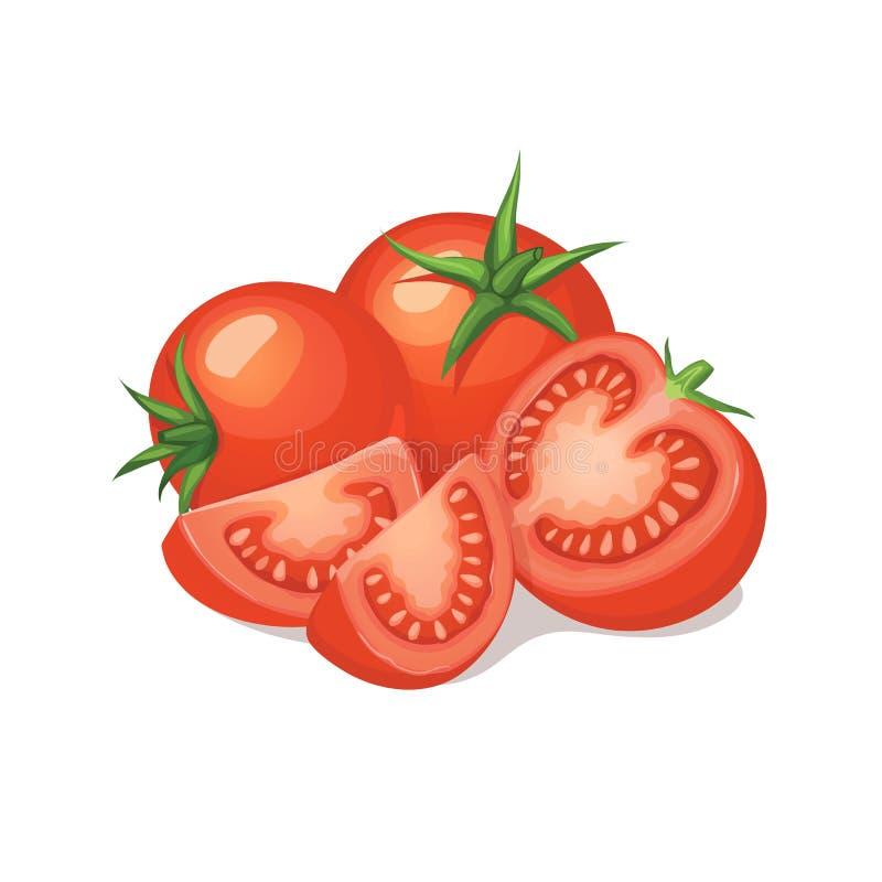 Reife Tomatenzusammensetzung vektor abbildung