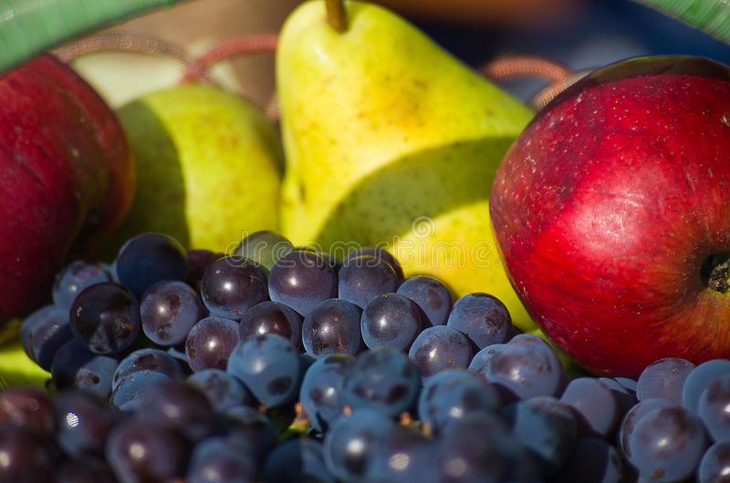 Reife und köstliche Äpfel, Birnen und Trauben lizenzfreies stockfoto