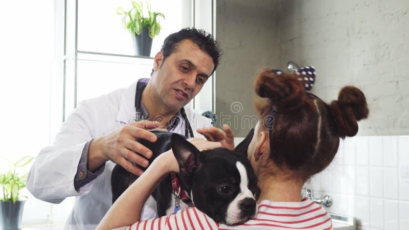 Reifen Sie den Berufstierarzt, der mit einem kleinen Mädchen beim Streicheln ihres Hundes spricht stockfotos