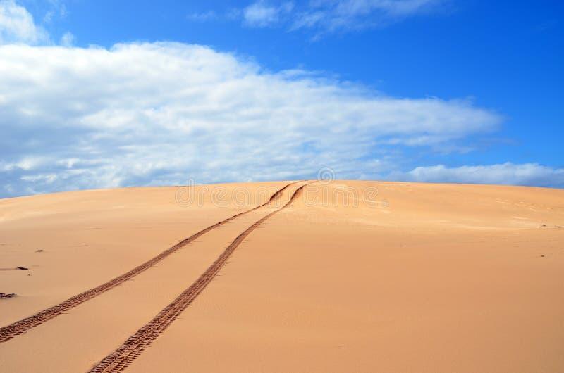 Reifenbahnen über Sanddünen stockfotos