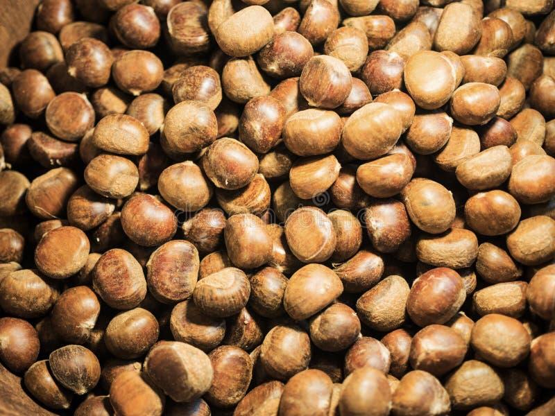 Reifer Kastaniensamen für Snackhintergrund lizenzfreies stockbild