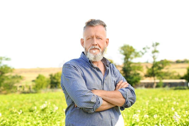 Reifer Landwirt auf dem Gebiet lizenzfreies stockbild