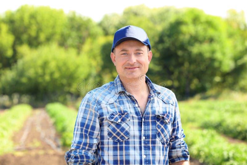 Reifer Landwirt auf dem Gebiet stockbild