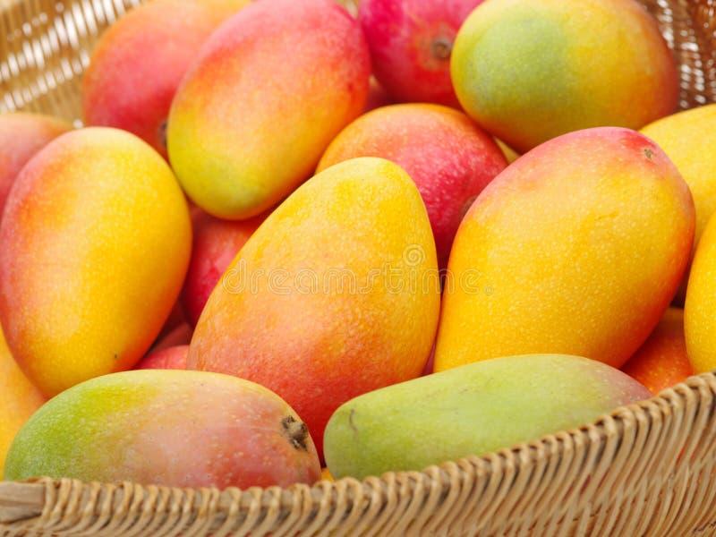 Reifer Mangostapel im Markt stockfotografie