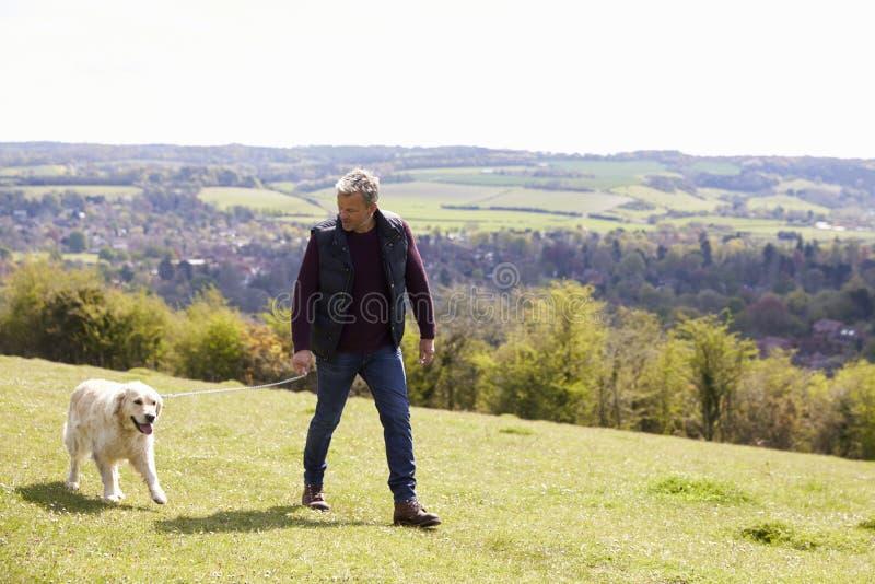 Reifer Mann, der golden retriever für Weg in der Landschaft nimmt lizenzfreie stockfotografie