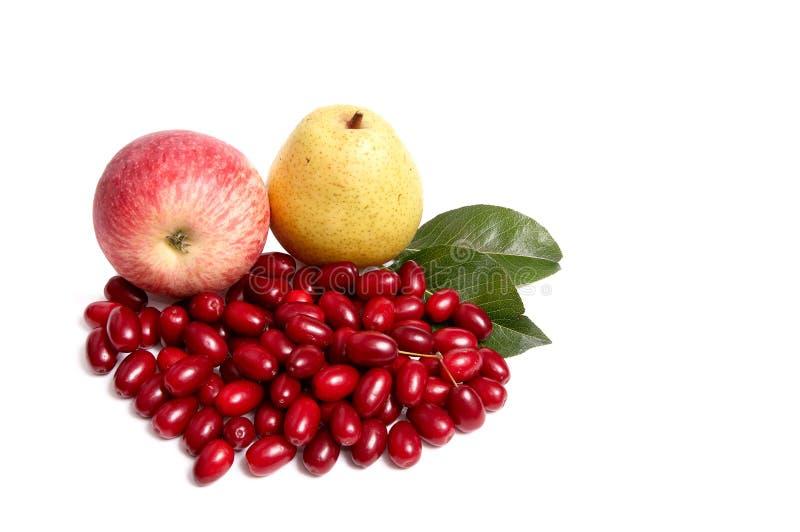Reifer, neuer Herbst trägt auf einem Weiß Früchte. lizenzfreies stockfoto