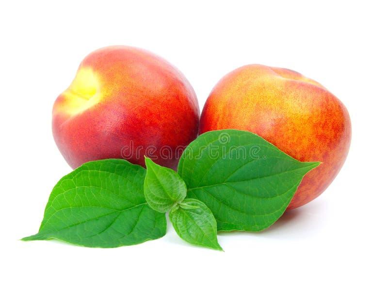 Reifer Pfirsich mit Blättern stockfotografie