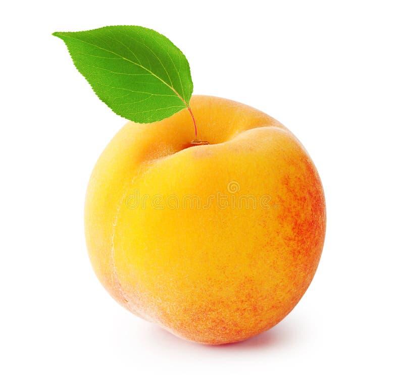 Reifer Pfirsich mit Blatt stockfoto