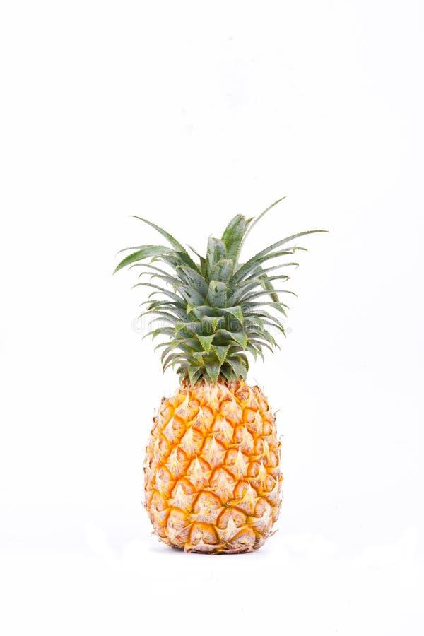 Reifes Ananas Ananas comosus auf Ananas-Fruchtlebensmittel des weißen Hintergrundes dem gesunden lokalisiert stockbild