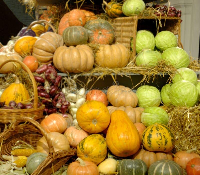 Reifes Gemüse Geschenke des Falles Kürbise, Kohl, Zwiebeln, Mais Hintergrund lizenzfreies stockfoto