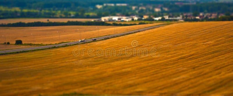 Reifes Weizenfeld mit Straße stockbilder