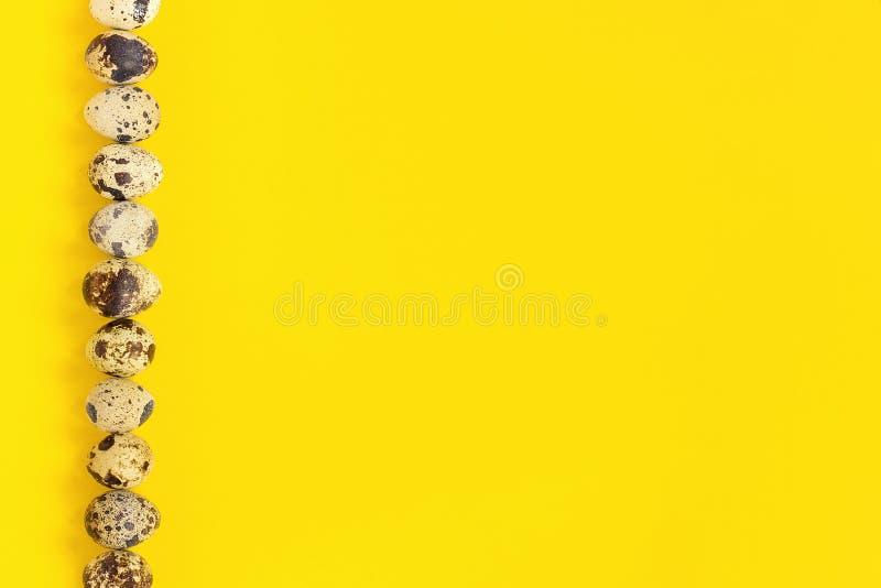 Reihe auf linken Randwachteleiern auf gelbem Papierhintergrund Junges Küken in Wanne, 2 malte Eier und Blumen Kopienraumbeschrift lizenzfreie stockbilder