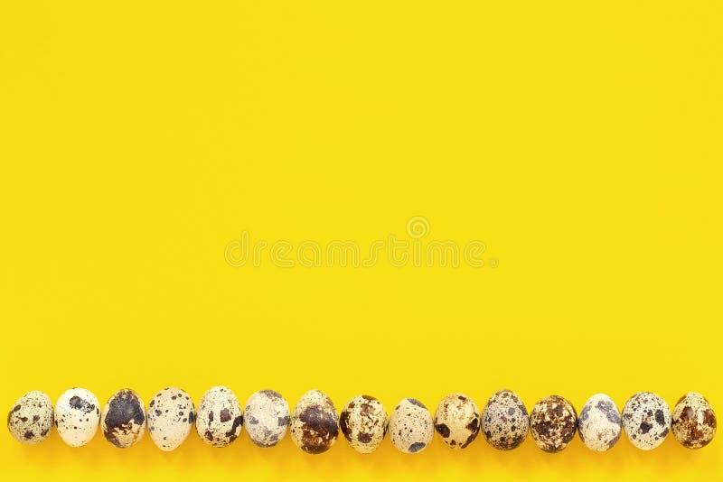 Reihe auf Unterkantewachteleiern auf gelbem Papierhintergrund Junges Küken in Wanne, 2 malte Eier und Blumen Kopienraumbeschriftu stockfoto