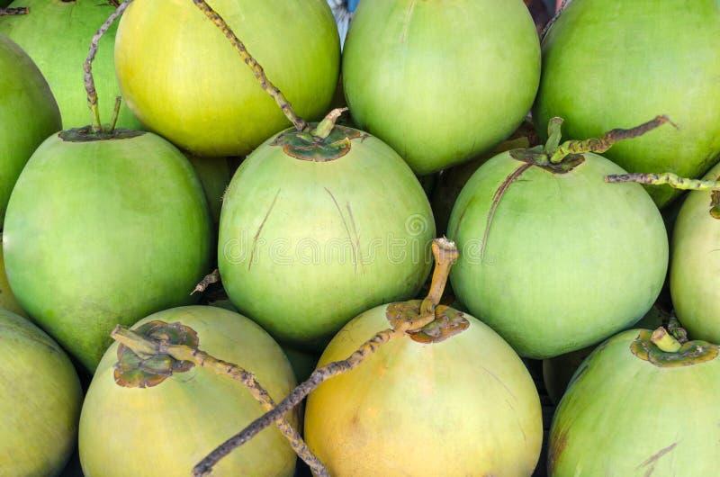 Reihe des strukturierten Hintergrundes der grünen Kokosnüsse lizenzfreie stockbilder