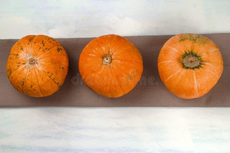 Reihe von drei Kürbisen auf einem weißen Hintergrund des Tuches stockfotografie
